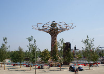 Milan Expo - trees secured with anchor systems