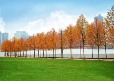 Four Freedoms Park, New York – USA