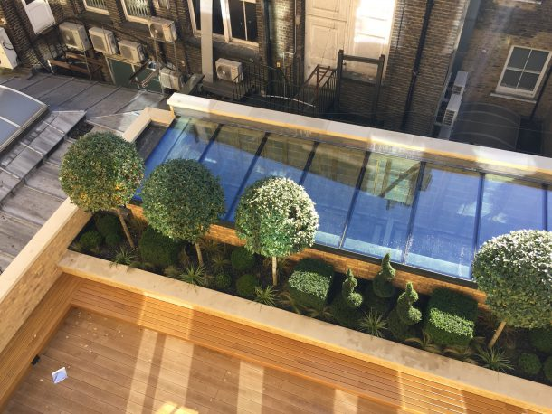 Private garden in the centre of London on Great Marlborough Street